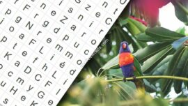 Animals Word Search 270x152